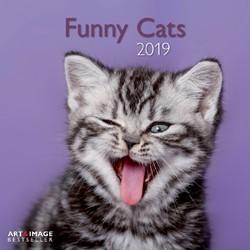 Kalender 2019 teNeues funny cats