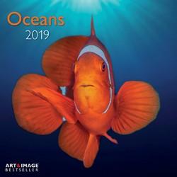 Kalender 2019 teNeues oceans